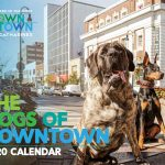 2020 DOWNTOWN ST. CATHARINES CALENDAR